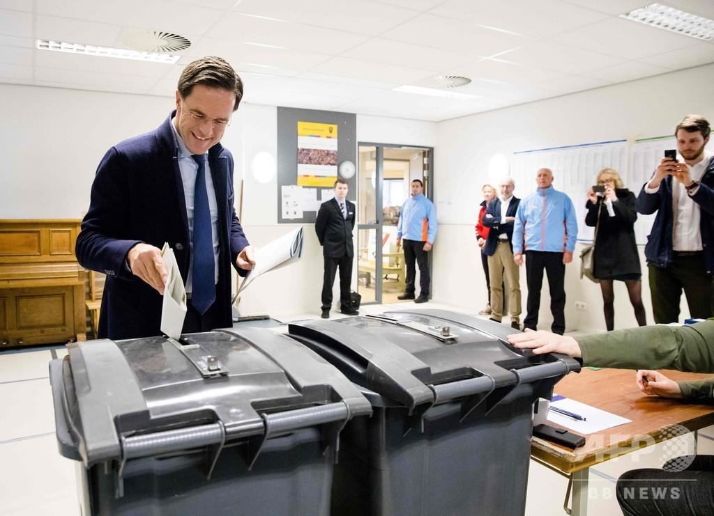 オランダ州議会選でポピュリスト躍進、与党は上院で過半数割れか