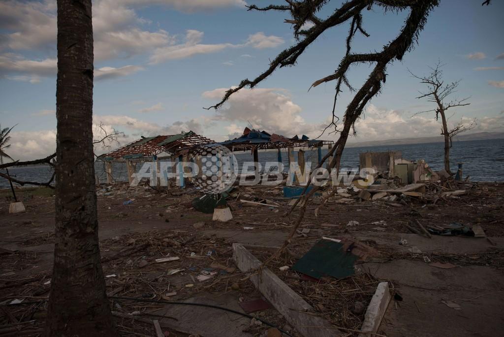 比政府、マングローブ植林拡大計画を発表 台風被害受け