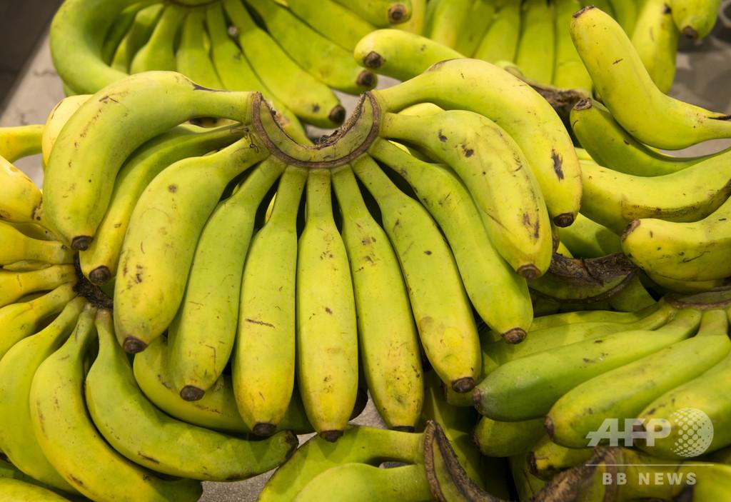 店頭に並ぶ直前!? スーパーのバナナ箱にコカイン、24億円相当 ポーランド