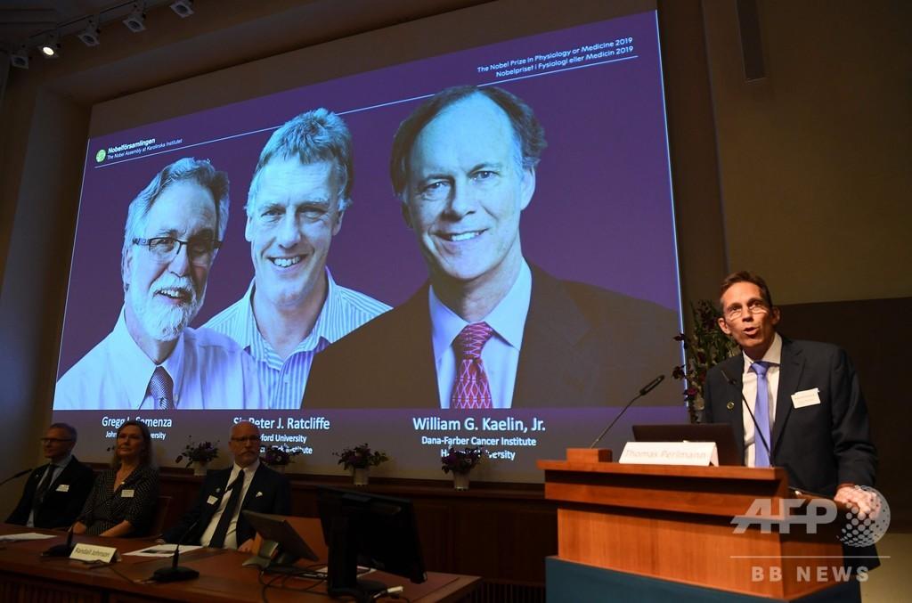 2019年のノーベル医学生理学賞、米英の3氏に
