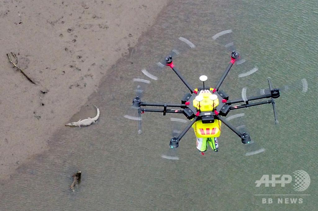 AI搭載ドローンがワニのパトロール、豪で試験飛行