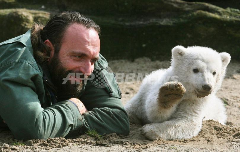 ホッキョクグマ「クヌート」の飼育員、遺体で発見 ドイツ