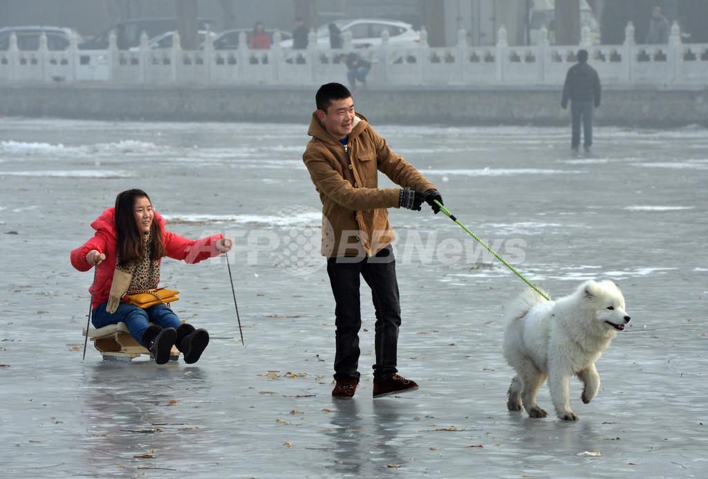 凍てつく北京の冬、結氷した湖面で遊ぶ犬