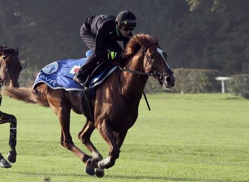 凱旋門賞、出走した歴代の日本馬