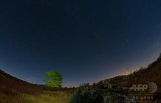 11光年離れた恒星から「独特な信号」、専門家は宇宙人説否定