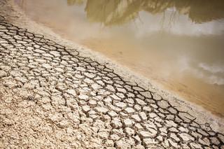 南アフリカ、干ばつによる国家非常事態宣言を解除