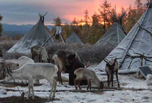 再生可能エネルギーの宝庫として急浮上のモンゴル