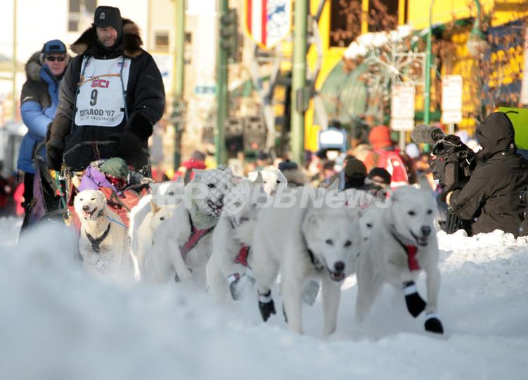 山あり谷ありの20日間、アラスカ「犬ぞりレース」開催 - 米国