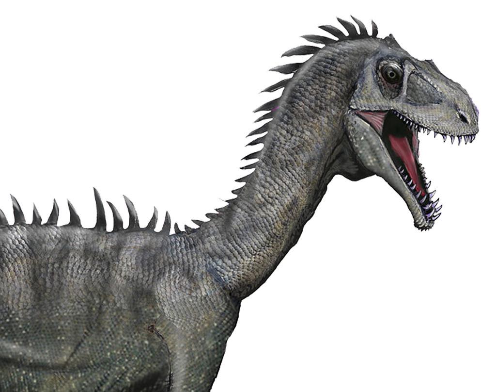 成熟で歯失う恐竜、鳥のくちばし形成解明のカギに 中国研究