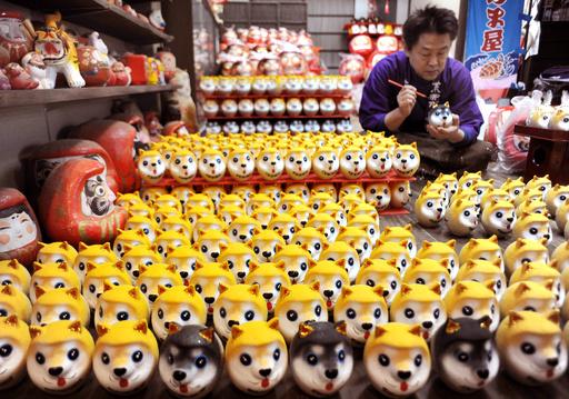 犬好き必見!  柴犬モチーフの「干支だるま」ずらり 神奈川