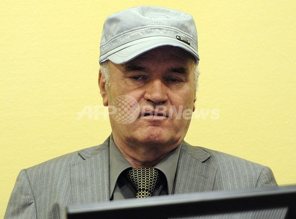 ムラディッチ被告が初出廷、「不愉快きわまる起訴」と罪状認否を拒否