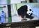 フランス初のパンダ出産、双子も1頭は直後に死ぬ