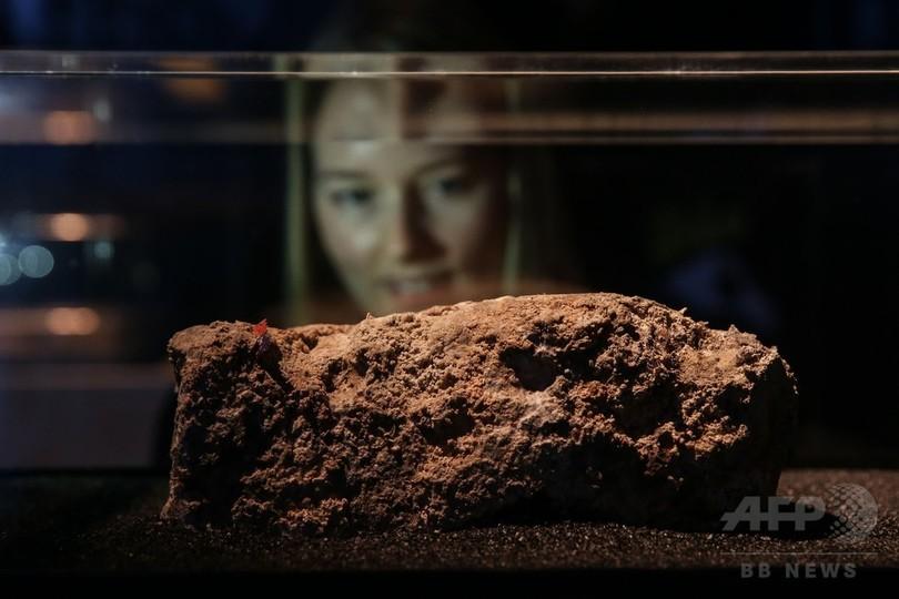 ロンドン下水管の「怪物級」油脂の塊、博物館で展示
