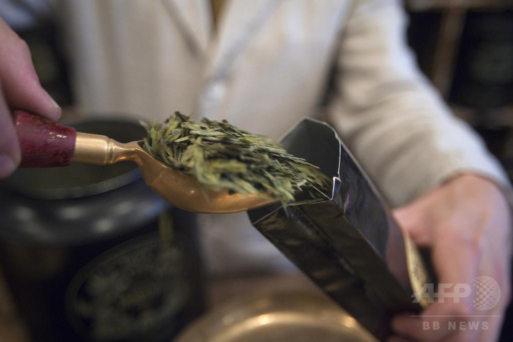 緑茶の成分、ダウン症患者の認知能力向上に効果 研究