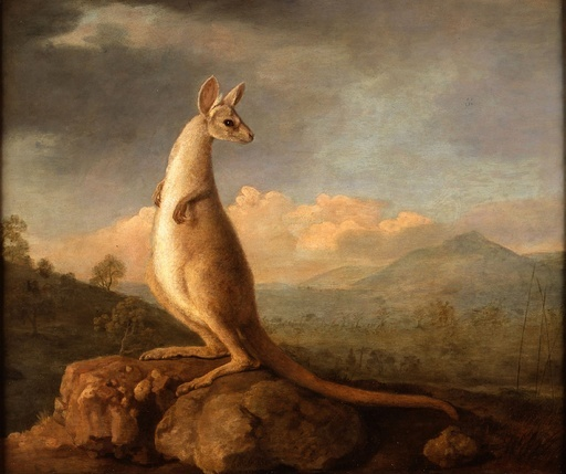 「初のカンガルー絵画」で所有権争い、豪美術館の購入を英国が阻止