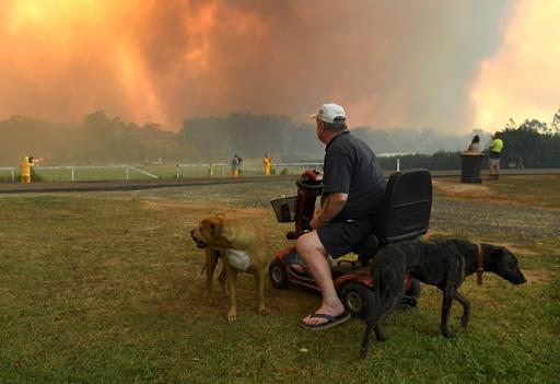 豪東部の森林火災、シドニー中心部から15キロ以内に到達