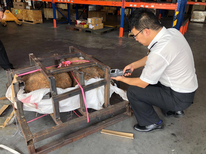 上海税関、虚偽申告の隕石850キロ超を押収