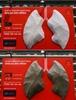 巨大な肺のアート、10日間で真っ黒に 印ニューデリーの大気汚染