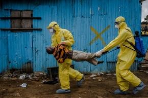 ピュリツァー賞、米NYタイムズが3部門で受賞 エボラ報道などで