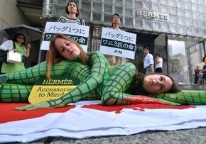 ワニに扮してエルメス革バッグに抗議、東京・銀座