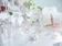 ジルスチュアート ビューティ、10周年記念パーティ開催