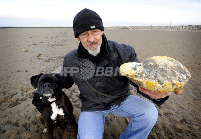 イヌの散歩で見つけた臭い石は「龍涎香」か、620万円のオファーも