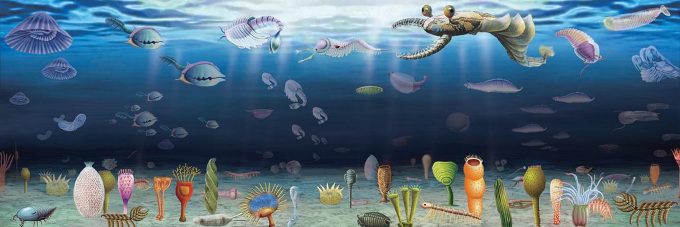 中英の科学者、5億年以上前の「地球の大酸化」を復元