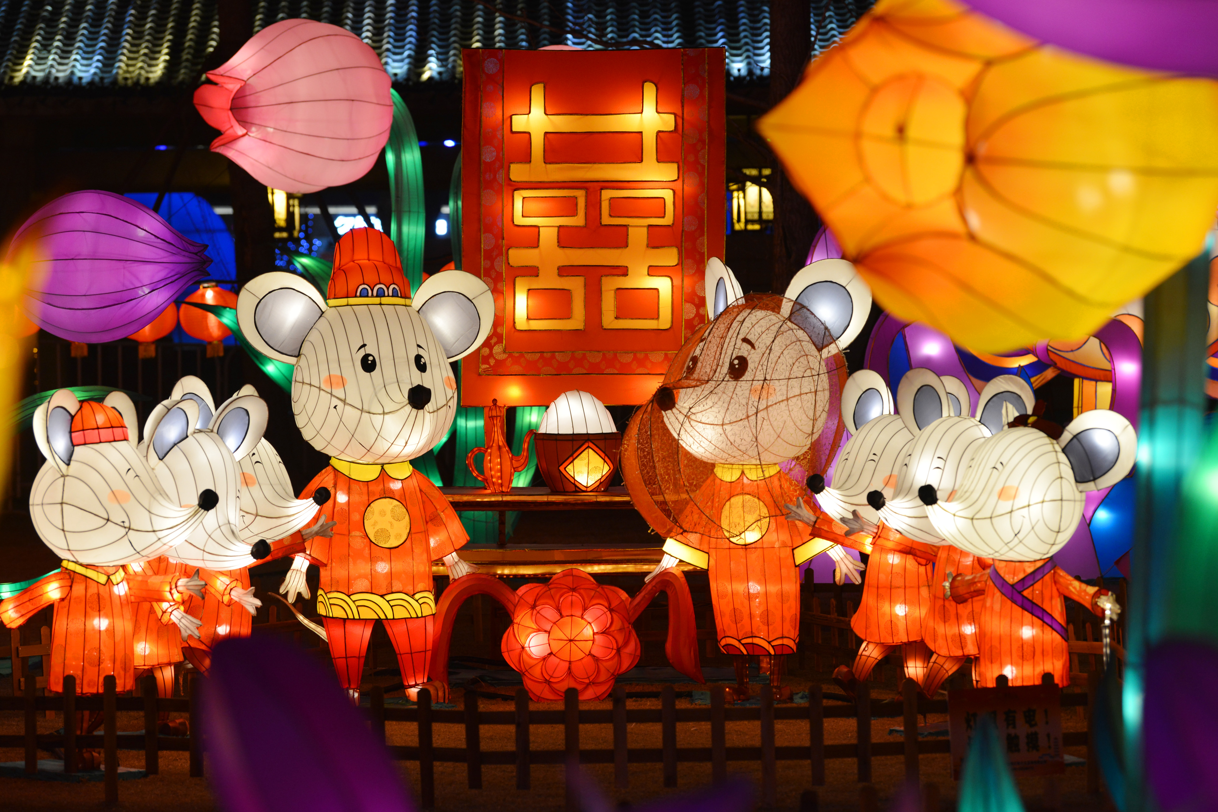 色鮮やかなランタンを楽しむ 中国・江蘇省
