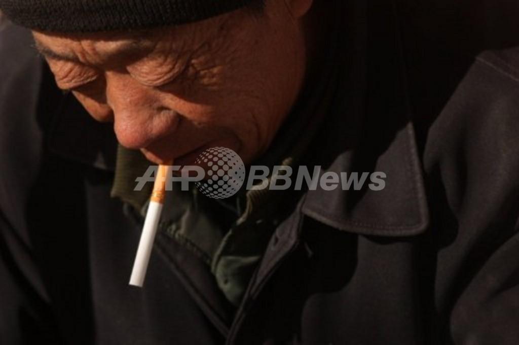 ニコチンガムやパッチに禁煙補助効果なし、米研究