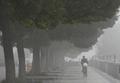 濃霧のようにたれ込めるスモッグ、中国