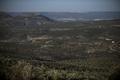 スペインとポルトガルで深刻な干ばつ被害、乾期が長期化