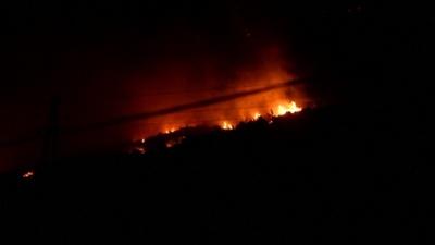 動画:クロアチア南部で森林火災、住宅4戸焼失 観光客ら避難