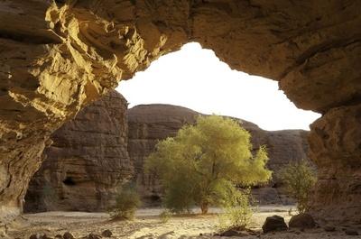 訪問者が名前残す? チャド、世界遺産の洞窟壁画に落書き