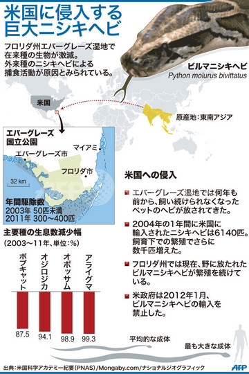 【図解】米国に侵入する巨大ニシキヘビ