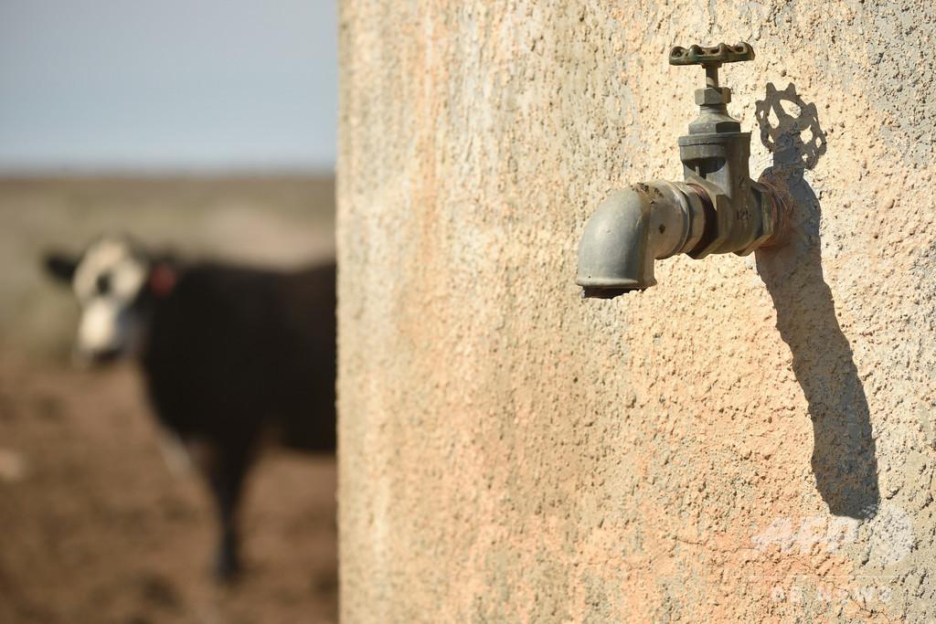 豪シドニーで大規模な給水制限 10年ぶり、記録的干ばつで