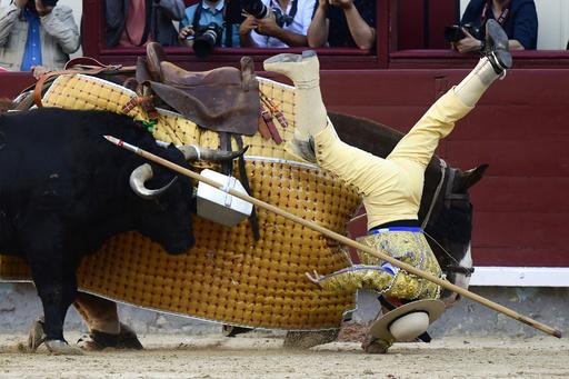 【今日の1枚】「儀式」──牛との真剣勝負
