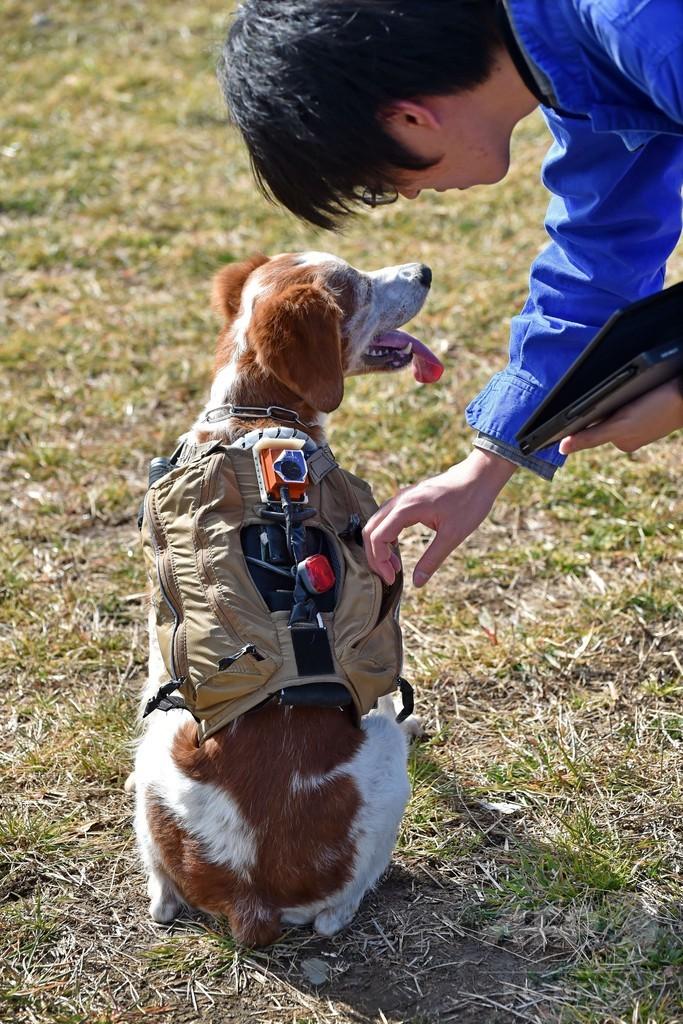 「サイバー救助犬」災害現場で活躍目指す 東北大チーム