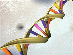 新たな「DNAアルファベット」、米チームが作成に成功 英科学誌