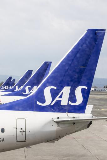 北欧の伝統は「すべてコピー」 航空会社のCMが炎上