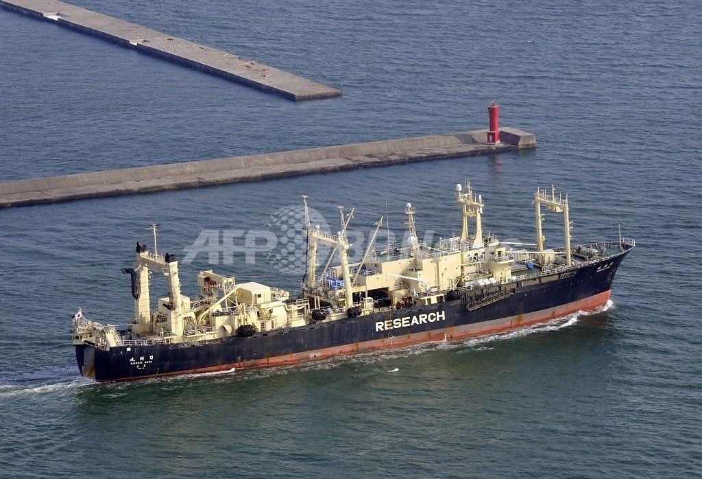 今季の調査捕鯨船団が出港、警備を強化