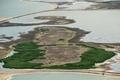 野生生物を呼び戻す、オランダで人工島建設