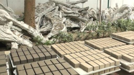 動画:苦境をチャンスに 火山灰とプラスチックごみでれんが作り フィリピン