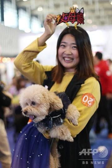 中国・南京で集団結婚式 ヒトでなく犬ですが
