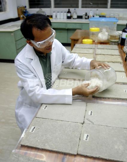 ニワトリの羽でできた合成板材、アジア建築界の未来担う