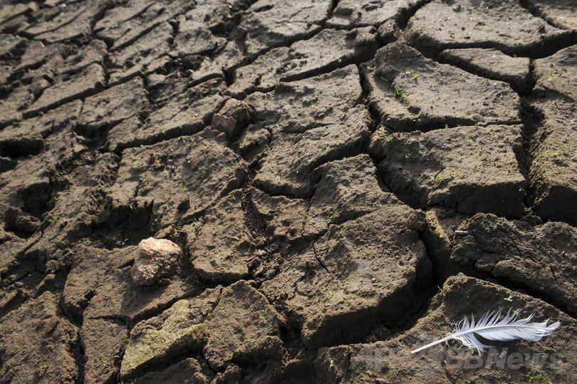 渇きの未来、迫る水危機