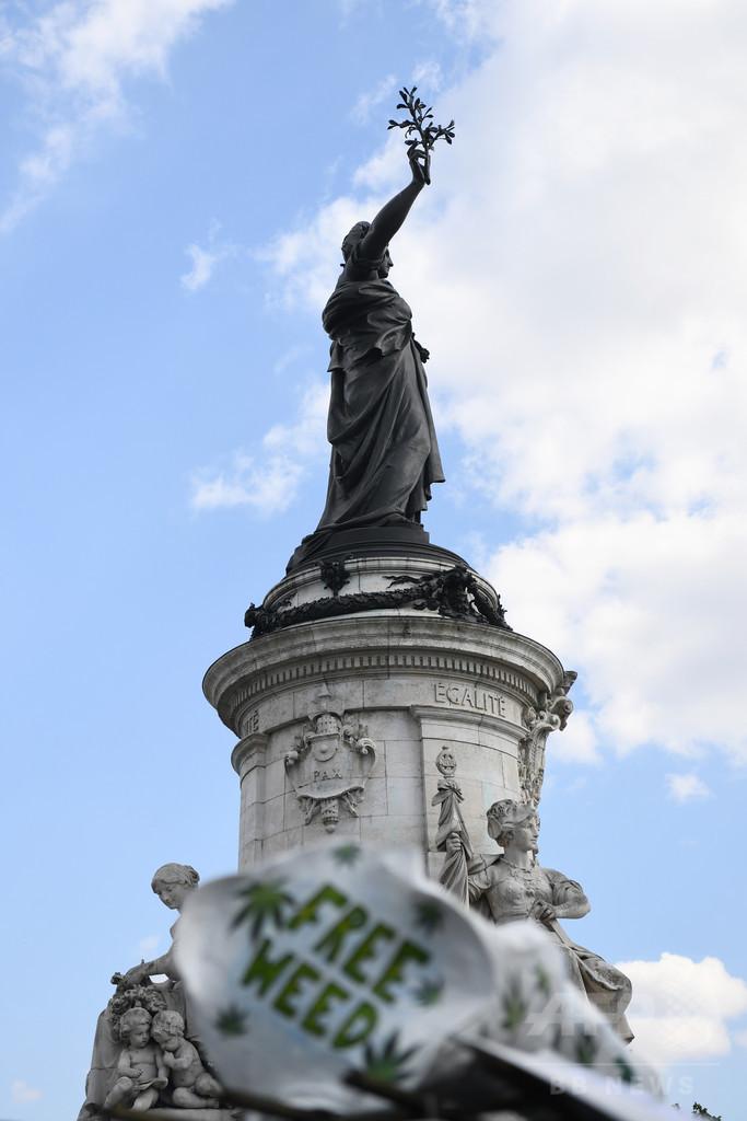大麻合法化は使用量増加につながる、フランス研究