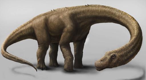 最大級の恐竜化石、アルゼンチンで発見 推定体重60トン