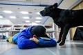 台湾地震で初出動の救助犬がお手柄、行方不明者の捜索に貢献