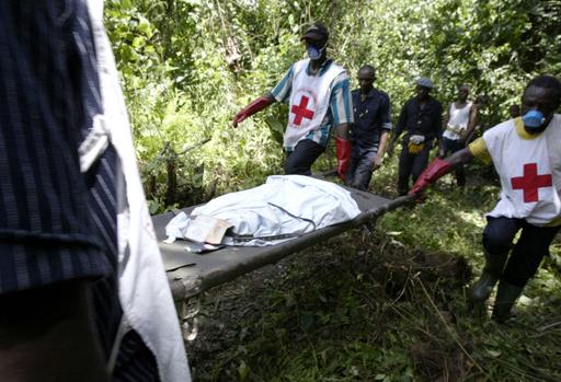 ケニア航空機墜落事故、遺体の回収作業始まる - カメルーン
