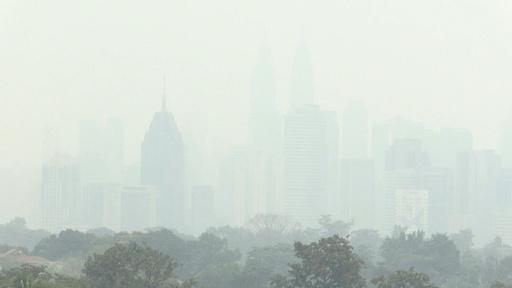 動画:インドネシアで森林火災急増 マレーシアにスモッグ広がる